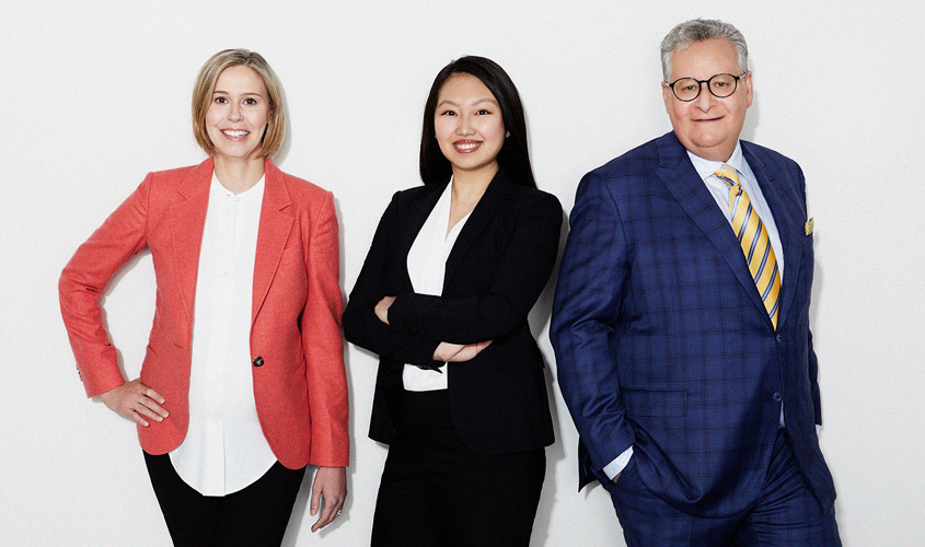 Gelgoot & Partners LLP, familiy lawyers in Toronto – Partners